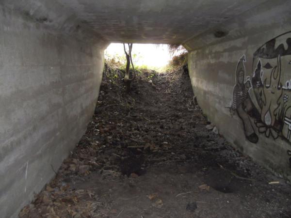 Onderdoorgang  van de wierde-afgraaftunnel - foto Fokko Leutscher.