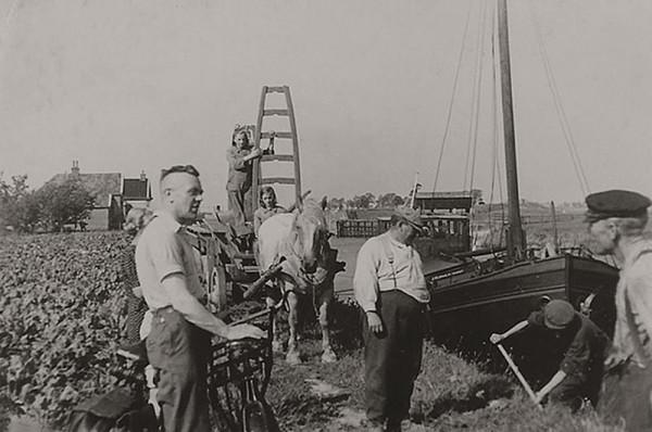 Foto van de Wetsingersluis : suikerbieten, boot in de schutkolk.Op de achtergrond : sluiswachterswoningen, benedenhoofd, schotbalkenloods, Op de voorgrond li/re: onderduiker, Roelfke van der Beek-Kraima, Aaltje, Trijn, Pieter van der Beek, onderduiker (met schop) en boer Veltman.